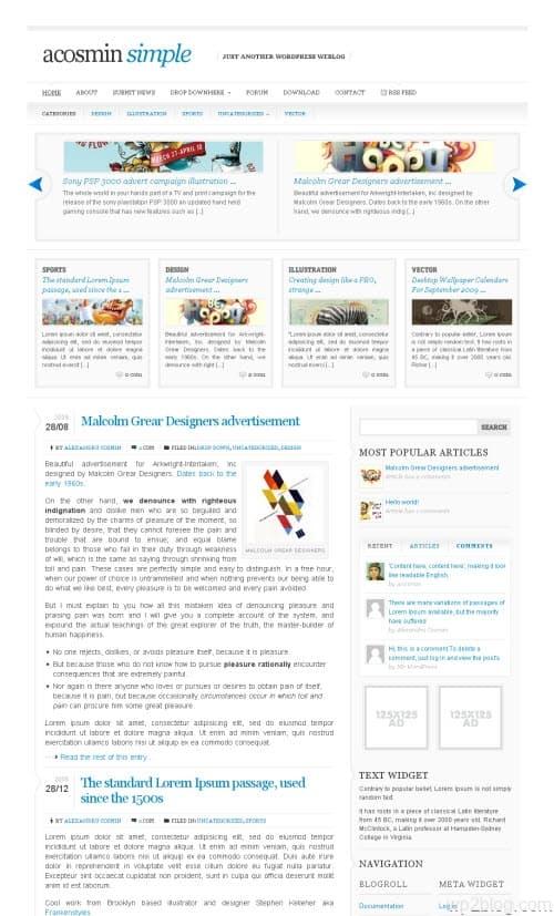 Acosmin Simple WordPress Theme