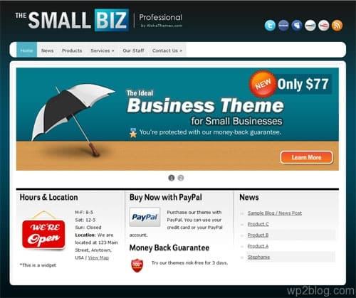 small bizz wordpress theme