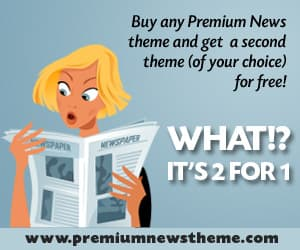 Premium News Theme Two for One