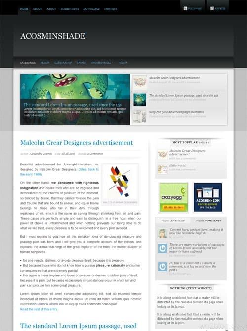 Acosmin Shade Premium WordPress Theme