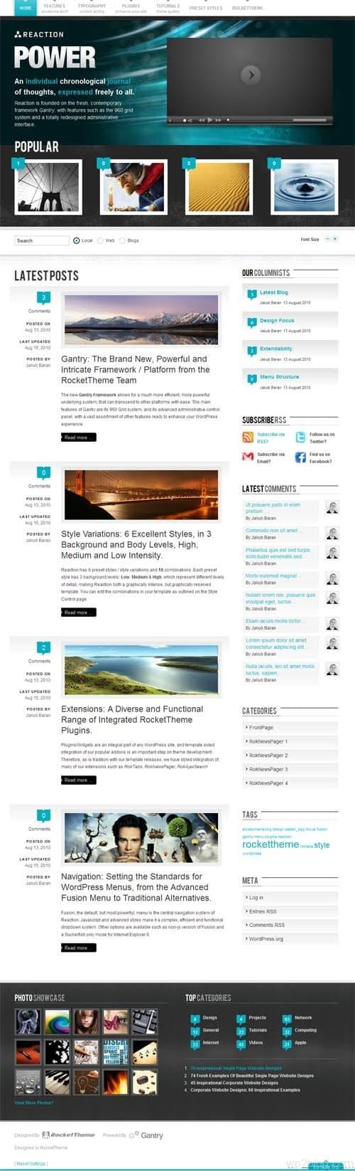 reaction wordpress theme