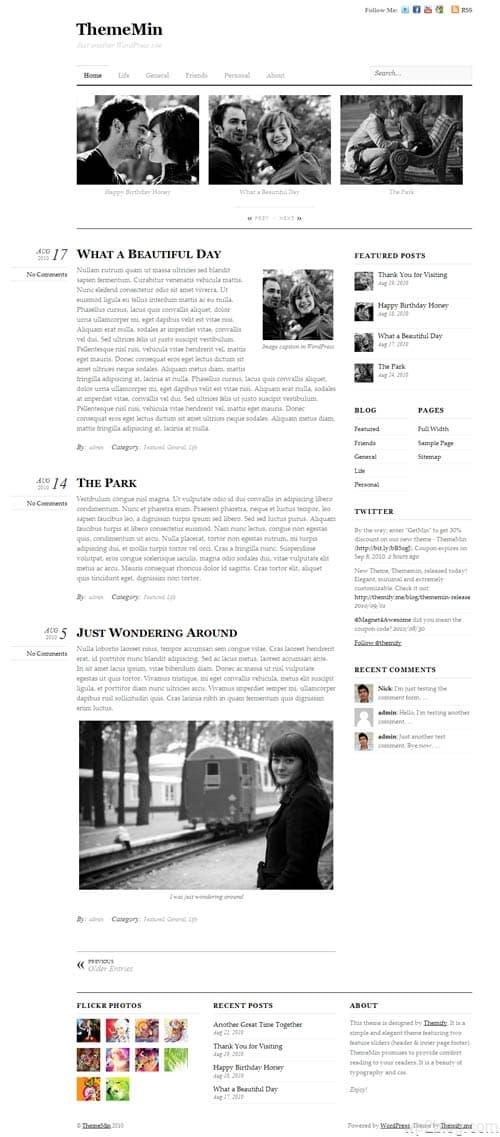 ThemeMin Premium WordPress Theme