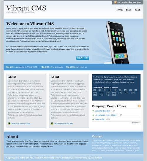 Vibrant CMS WordPress Theme