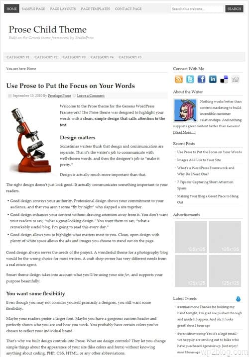 prose wordpress theme