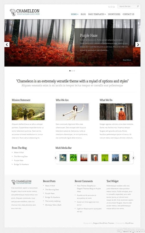Chameleon Premium WordPress Theme
