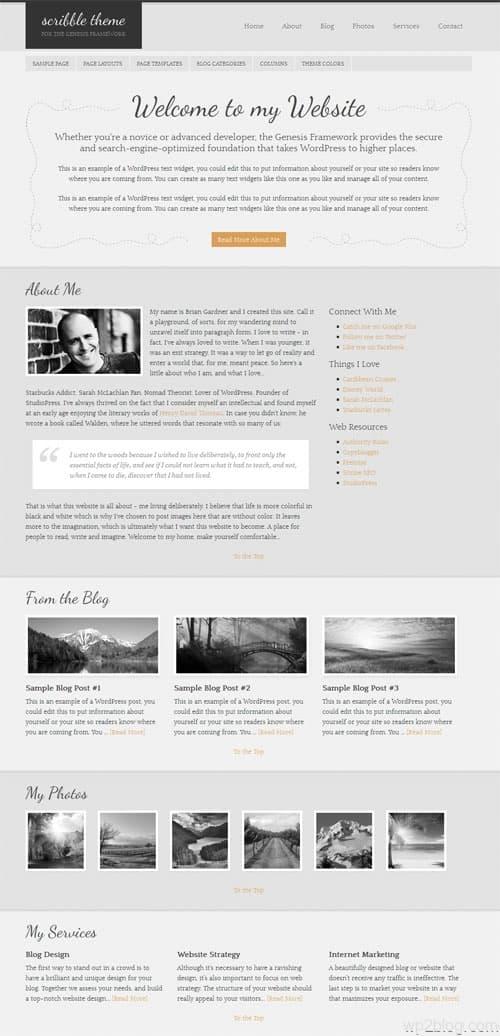 Scribble Premium WordPress Theme