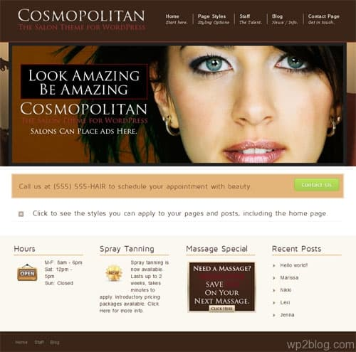 Cosmopolitan Premium WordPress Theme