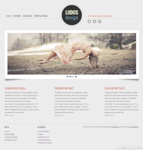 Lodos WordPress Theme