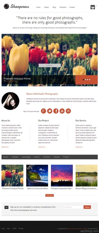 Sharpness WordPress Theme