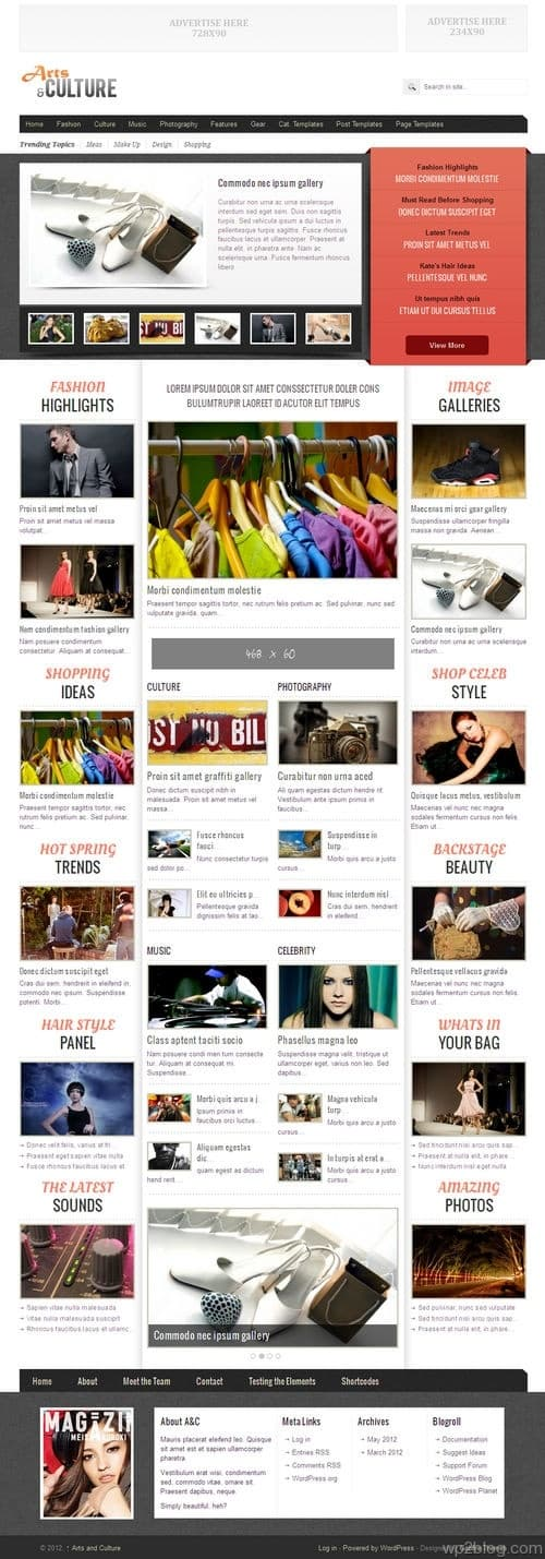 Arts & Culture WordPress Theme