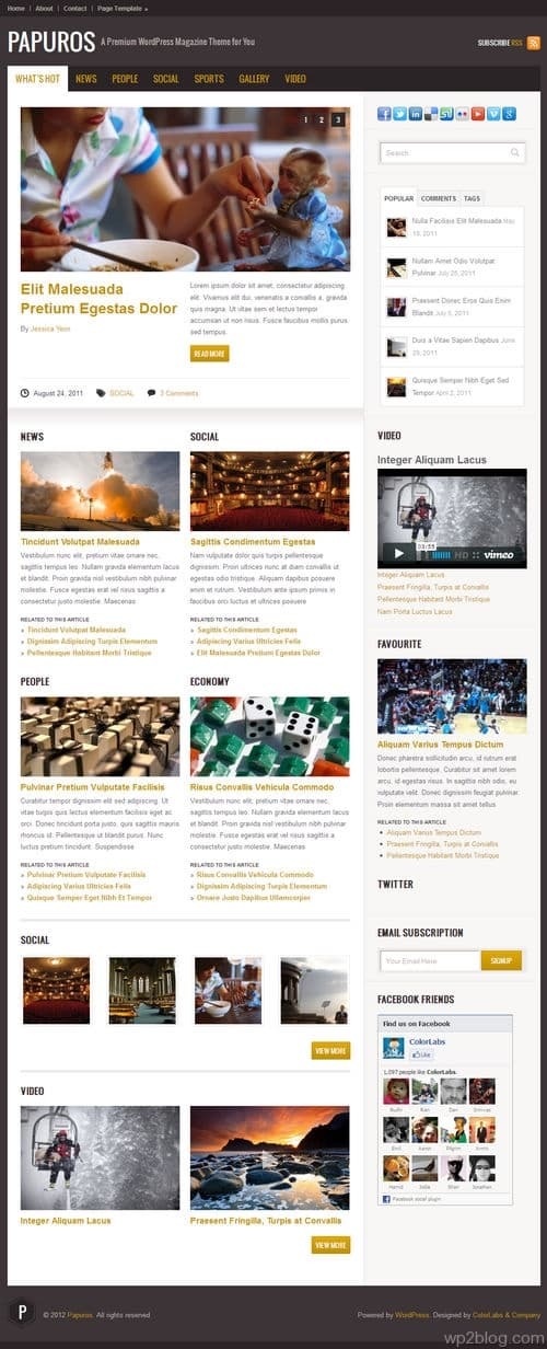 Papuros WordPress Theme