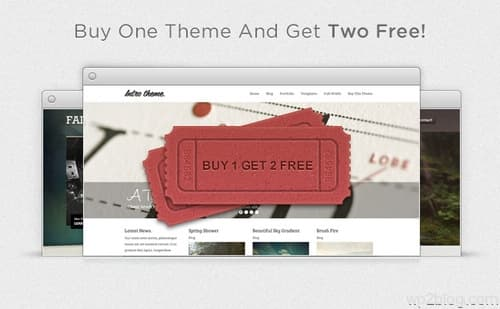 Mint Themes Promotion 2012 Aug