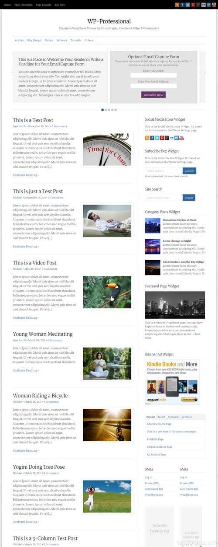 WP-Professional WordPress Theme