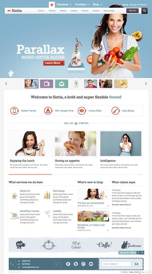Sintia WordPress Theme