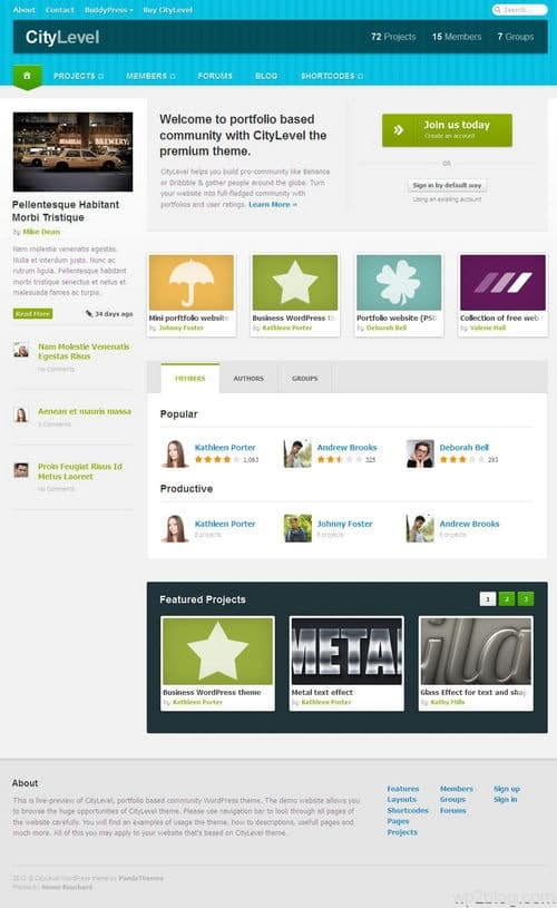 Citylevel WordPress Theme