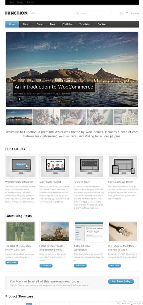 Function Responsive WordPress Theme