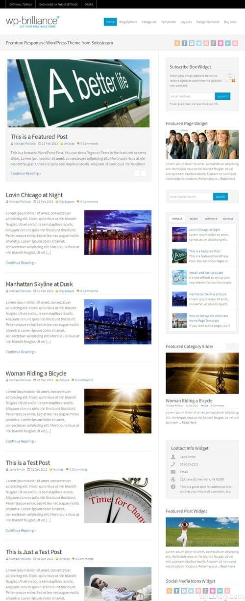 WP-Brilliance WordPress Theme