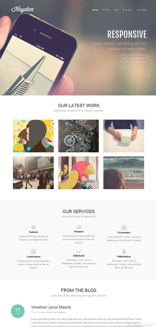 Hayden WordPress Theme