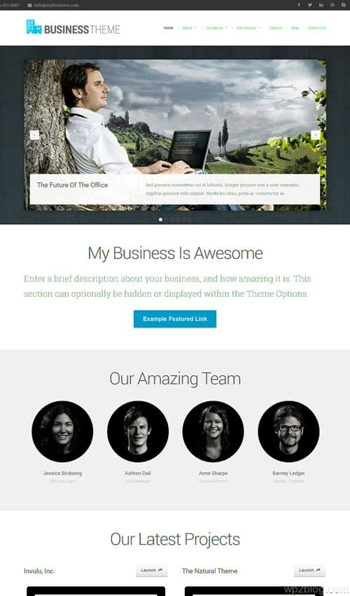 Business Theme V2.0