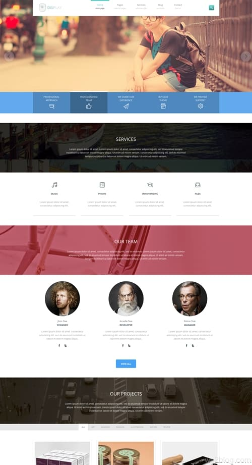 Display WordPress Theme