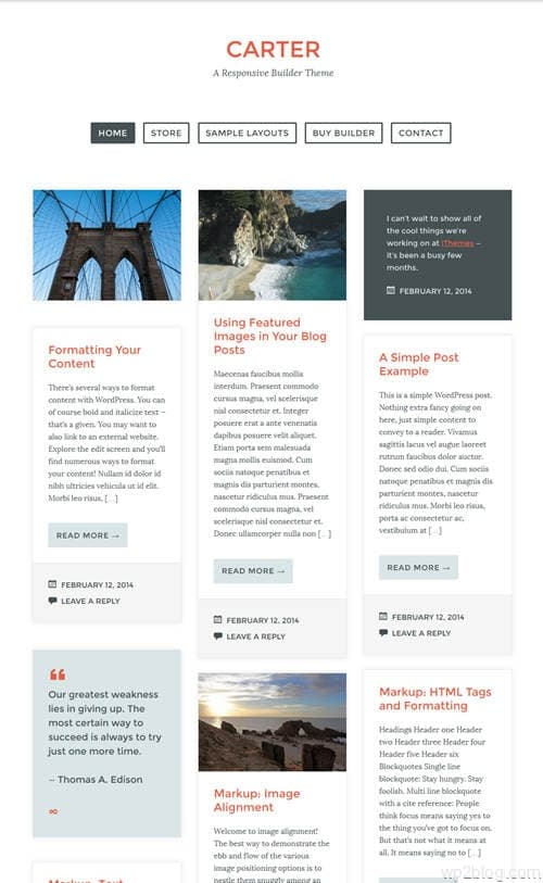 Carter WordPress Theme