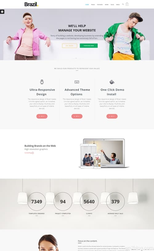 Brazil WordPress Theme