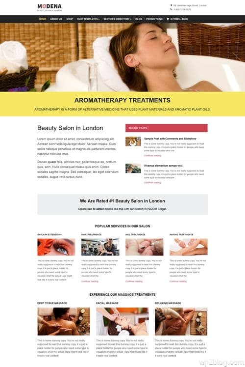 Modena WordPress Theme
