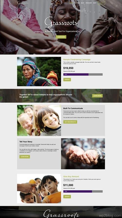 Grassroots WordPress Theme